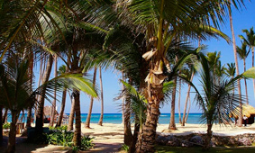 Almost 150 thousand Russian tourists rested in the Dominican Republic for the three quarters of 2018